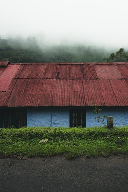 India_by_fejesbence_Kerala-6